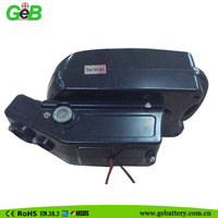 24V 8Ah small type lithium e-bike battery with high quality