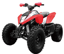 150cc atv/200cc/250cc/110cc/125cc quad bike in china