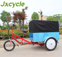 strong steel frame 3 wheel CE approved Powerful electric Cargo Trike with Cabin