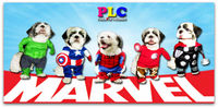 Cheap Unique and Quality Marvel Superhero Pet Dog Costumes Clothes Apparel Supplier from Philippines- Wholesale
