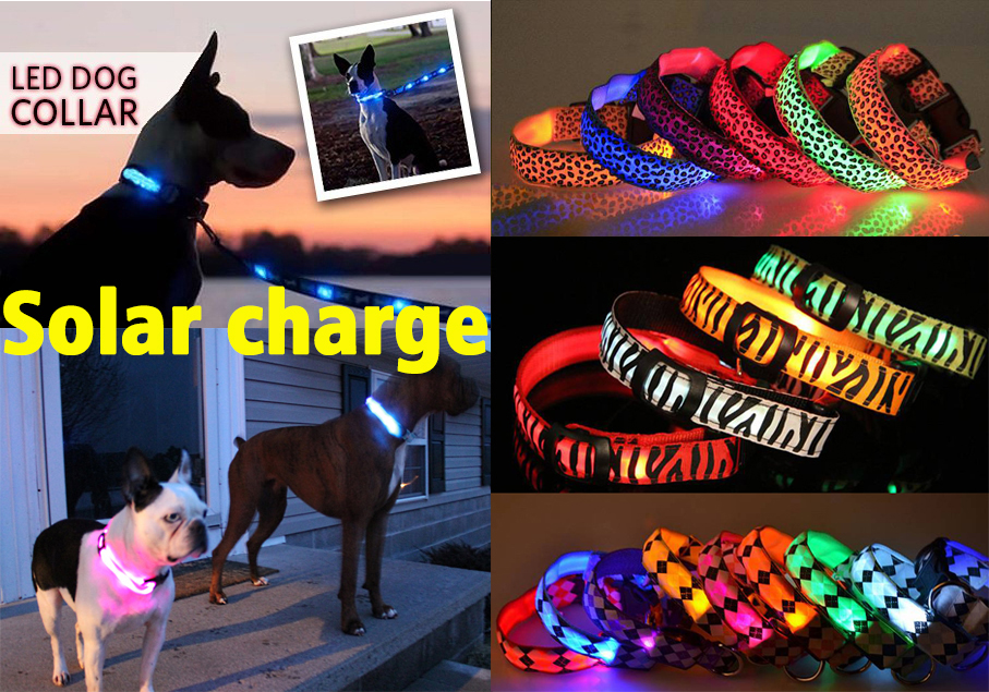 Fast shipping hot sales solar charge reflecting light safety pet dog collar