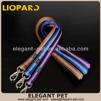 Contemporary most popular top quality strong nylon dog leash
