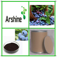 Natural Bilberry Extract,GMP Kosher Biberry Extract,organic bilberry extract