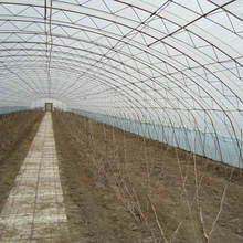 modern design greenhouse factory price plastic greenhouse