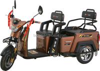 folding Newest adults electric tricycle for hot sale