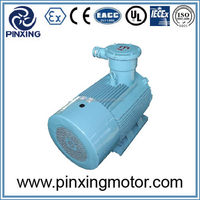 Quality primacy newly design 3 phase electric ac motor 250 kw