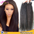 Factory Supplier Top Premium Quality Malaysian Raw Virgin Remy Afro Kinky Human Hair