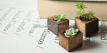 Custom succulent wooden box planter,indoor decorative wood plant pots