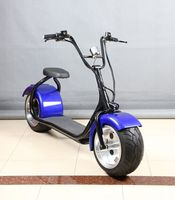 Fat tire 1000w 800w citycoco electric scooter CE /EEC with two seat
