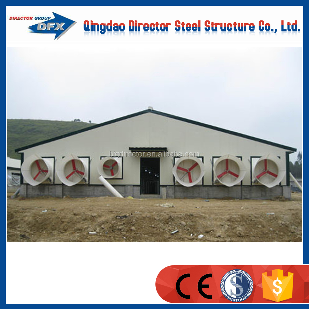 steel structral poultry shed cooling pad chicken farm construction