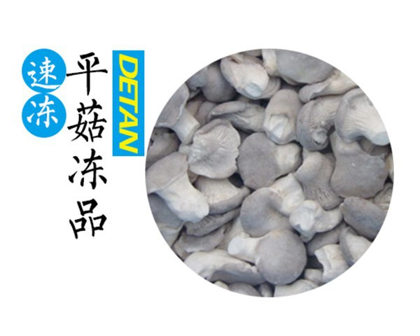 Best Price For IQF Frozen Oyster Mushrooms