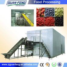 fluidized quick-freeze machine and wholesale from China foood iqf freeze