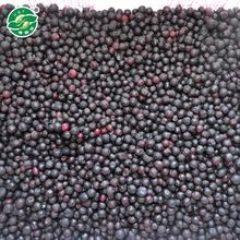 Price Of Fresh Fruit Iqf Frozen Blueberry