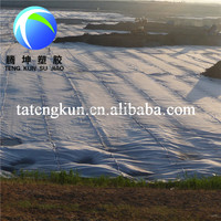 HDPE Geomembrane for River or Fish pond/Garden Liner