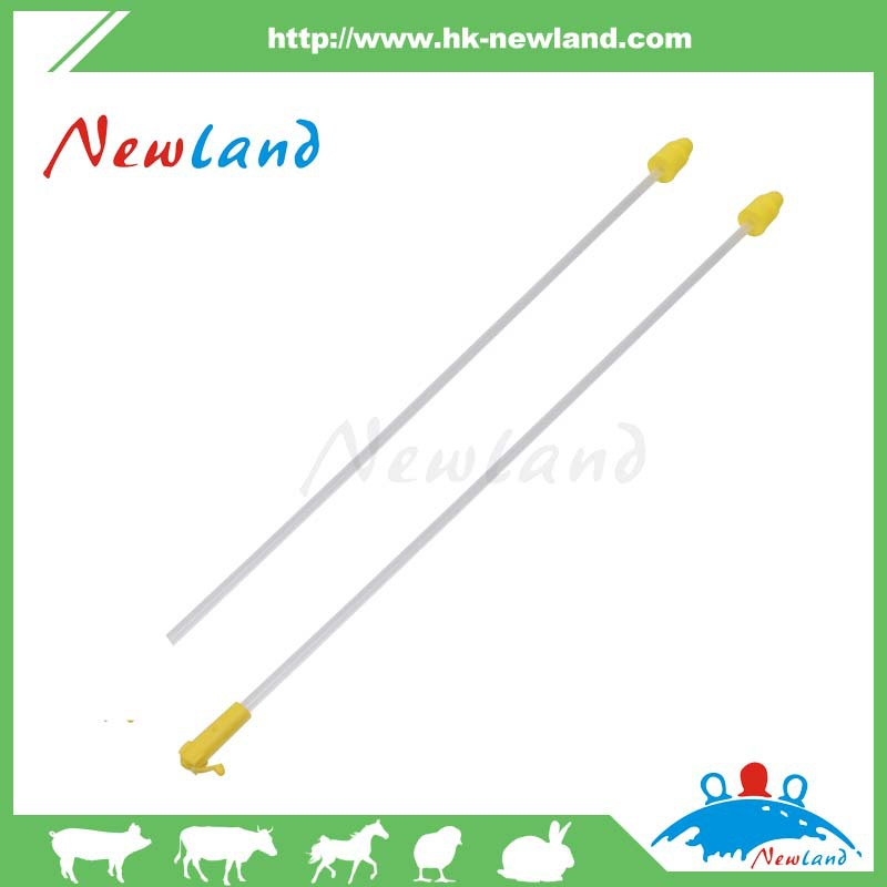 NL1003 foam tip catheter for pig in veterinary instrument
