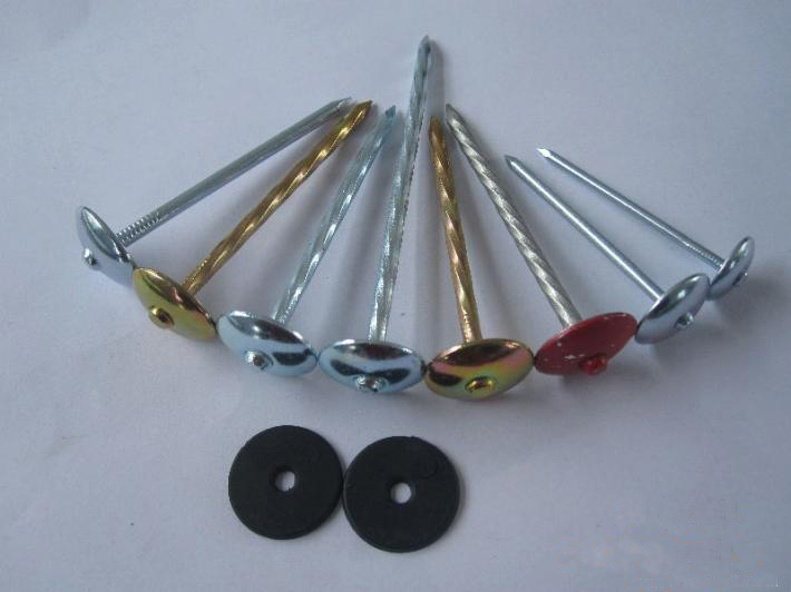 "BWG9X2.5"" twisted shank umbrella head roofing nails from China factory"