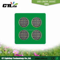 600w cob grow lights agricultural led grow lamps hydroponics grow tank