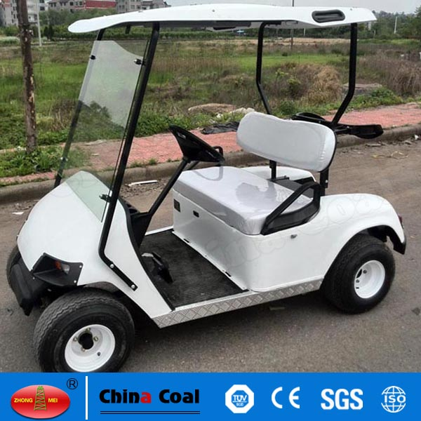 2 Seaters Mini Electric Golf Carts,Battery Buggy
