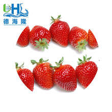 New season 2018 china sweet charlie iqf frozen strawberry and various frozen vegetabels seeds