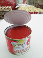 FDA, HALAL, ISO,HACCP certified tomato paste with brix 28-30%