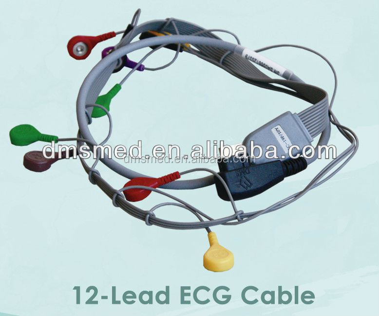 DMS 10 lead Anti-jamming Holter ECG cable 10 leads ECG cable