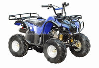 110cc Cheap ATV 4x4 for sale ATA110-D1 with EPA ECE