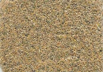 Guar Meal - Poultry Feed