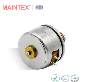 Factory Wholesale 10BY25 PM Stepper Motor PM Micro Motor