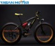 "Taiwan Brand High Quality 26"" Fat Electric Snow Bike 36V 350W Mountain Electric Bike"