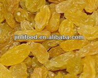 agriculture maufacture crop gold raisin
