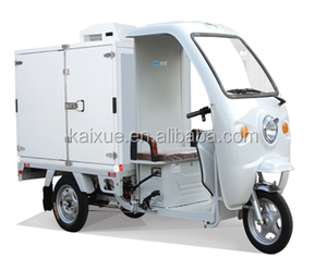 Mini Frozen Cabinet Cargo Electric Refrigerated Tricycle For Cooling Vehicle Sale Price
