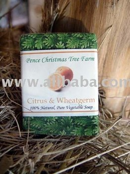 Citrus and Wheat Germ 100% All Natural Handmade Vegetable Soap Bar