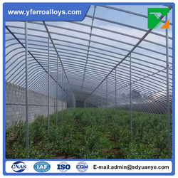Bset Price Small Size Simple Structure Plastic Covering Tunnel Type Greenhouse