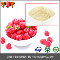 Fresh bilberry extract , bilberry powder