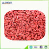 Chinese goji berry with best quality and free sample for you