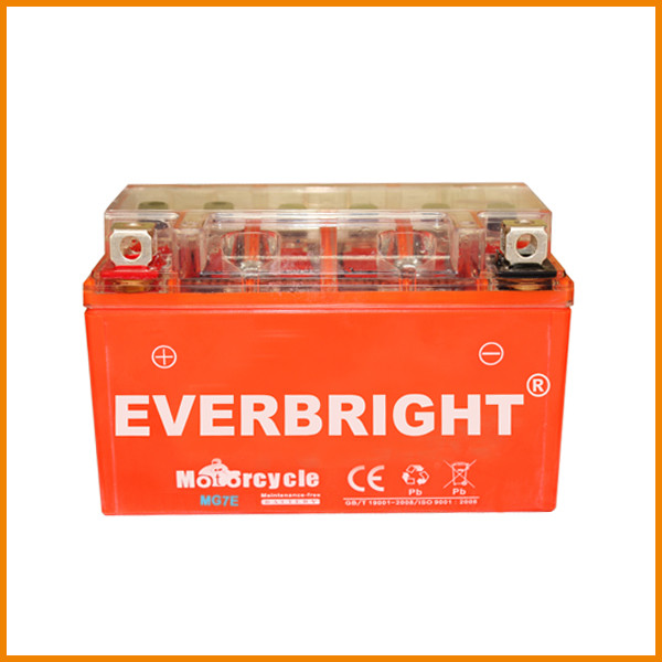 Everbright battery motorcycle lead acid battery rejuvenator CE ISO