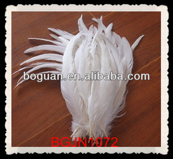 "8-10"" Wholesale white rooster tail feathers"