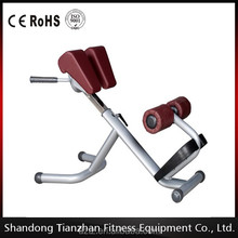 Gym equipment/back stretching muscle exercise equipment/commercial roman chair TZ-6026