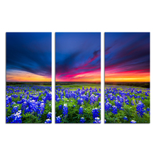 3 Panels HD Printed Nature Landscape Canvas Art Purple Flower Wall Picture Painting Modern Giclee Prints/SJMT1894
