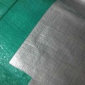 China Factory Manufacture Silver Green Color Polyethylene Tarp