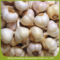 2016 new crop fresh normal white garlic for sale