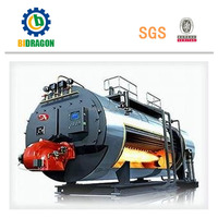 Industrial Steam Generate Equipment Commercial Gas Boiler
