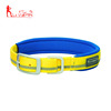 Premium reflective dog collar with neoprene padded inner and metal buckle
