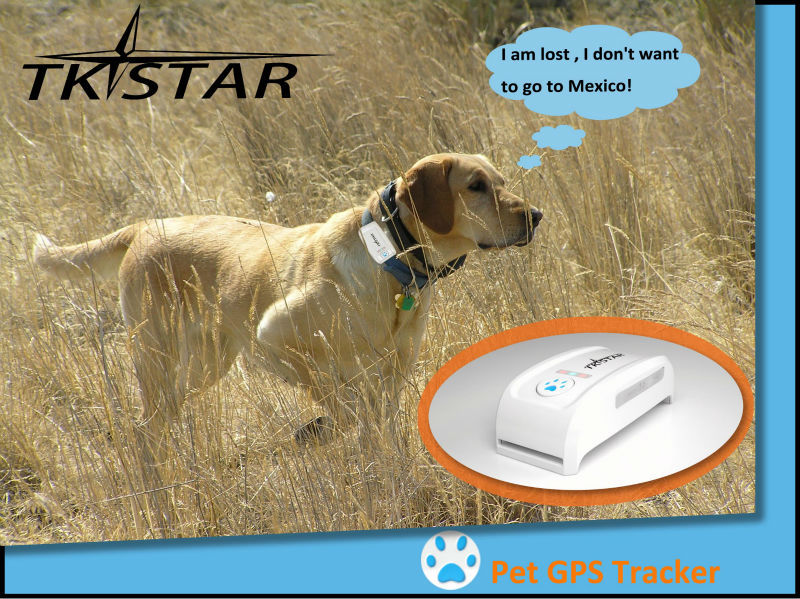 2016 tkstar tk909 pet gps tracker wireless gps car tracker/mini gps tracking system