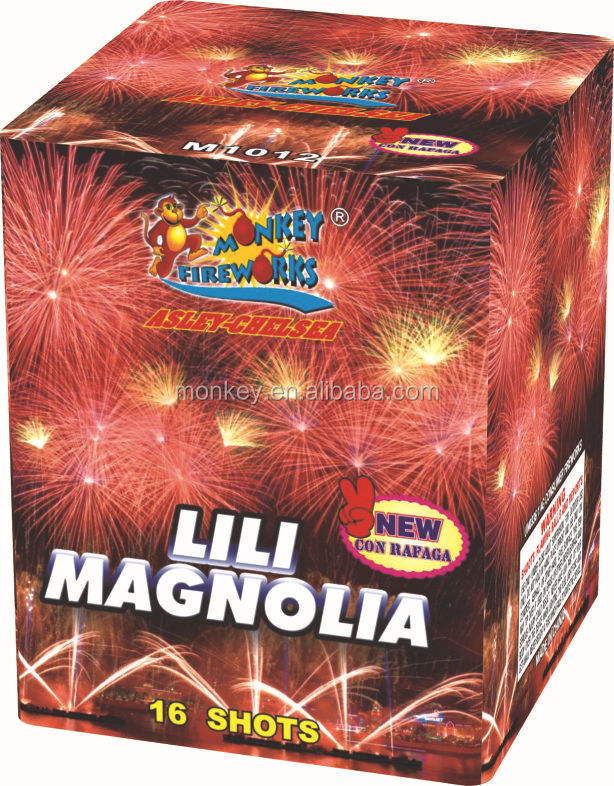 Professional Fireworks Cake and Display shell firework for display show 1.0'' 16Shots Lili Magnolia