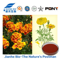 Eyes Production Marigold Extract Lutein Beadlets 10%