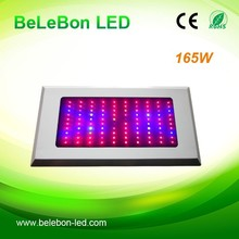 professional supplier vegetables/fruits/tomatoes 55*3W 165Watt led grow light