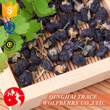 Professional manufacture cheap chinese black wolfberry fruit