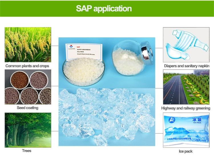 Solid rain for plant agriculture super absorbent polymer SAP plant <strong>resin</strong>