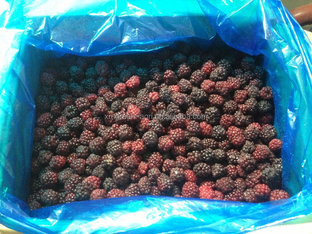 Frozen blackberry wild/cultivated grade A and B
